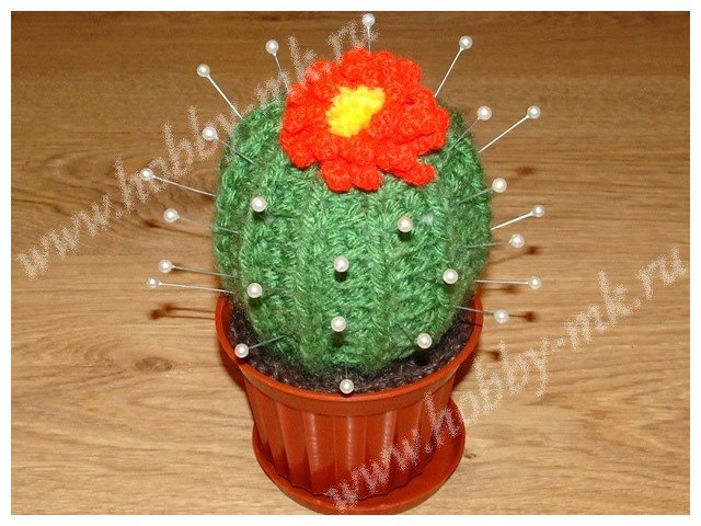 Игольница Цветущий кактус